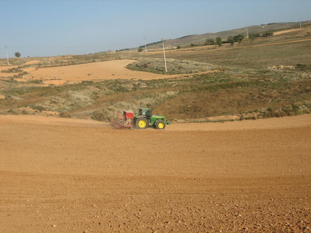agricultura_moyuela
